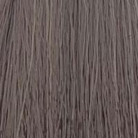Світлий попелястий блондин 9.1 Eslacolor