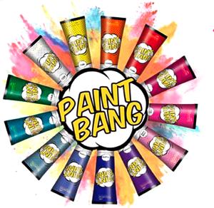 Nouvelle PaintBang прямой краситель для волос (13 оттенков)
